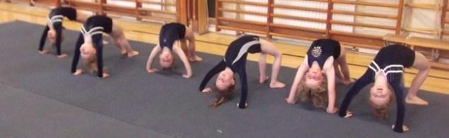 Girls doing bridge