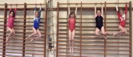 Gymnasts on wall bars