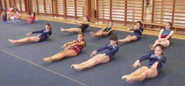 Gymnasts performing dish