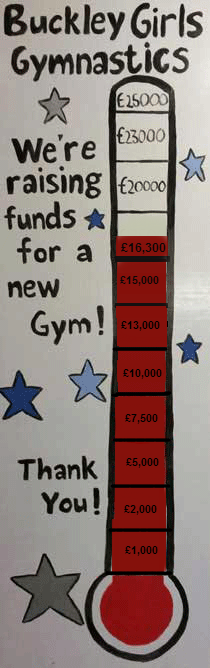 £16,324: What a [fundraising] year! (1/2)