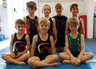 gwern-first-comp2017 (11)