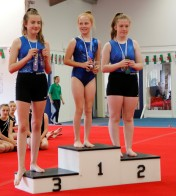 gwern-first-comp2017 (31)
